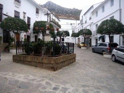 zona_plaza_de_la_verdura_