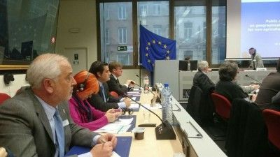 alcalde union europea