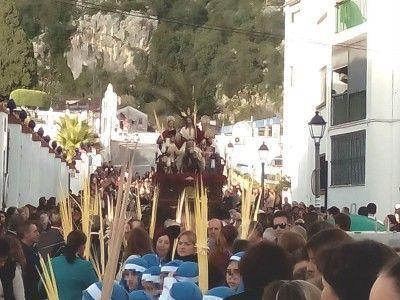 borriquita en Herrera Oria